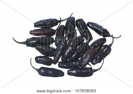 Black Chili Peppers