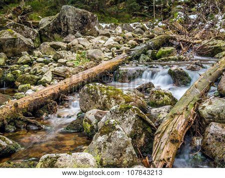 Mountain brook with mossy boulders in the Tatra mountans