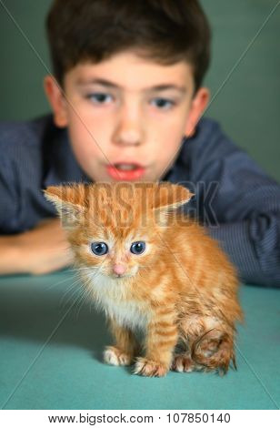 Boy With Red Kitten On Blue Wall Background