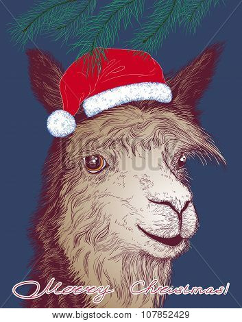 Christmas Vector Illustration With A Cheerful Alpaca