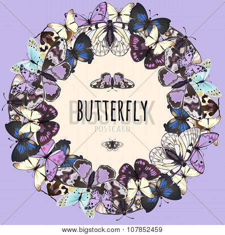 Butterflies set, space for text on pink background