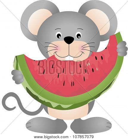 Mouse eating watermelon