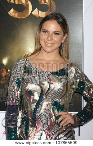 LOS ANGELES - NOV 9:  Kate del Castillo at the AFI Fest 2015 Presented by Audi -