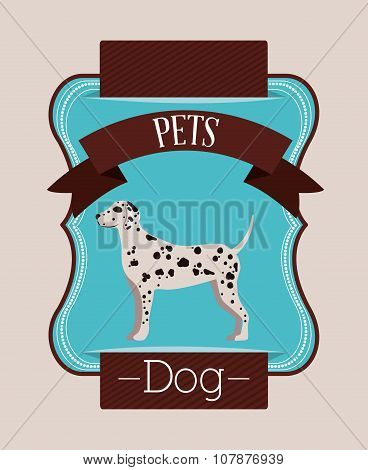 pet dog design