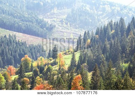 Autumn wooded slopes of mountains