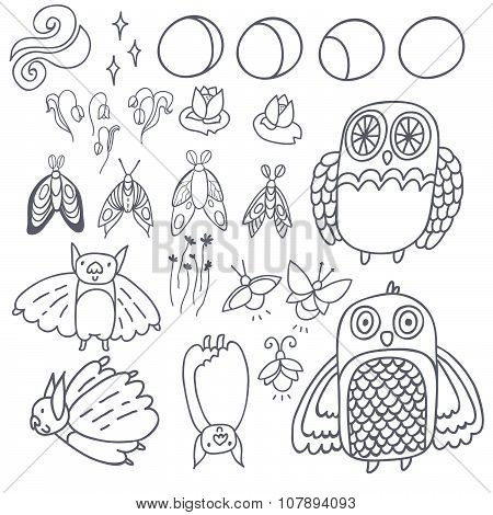 Night creatures outline vector set with adorable owls, bats, fireflies and moths. Moon phases. Hand