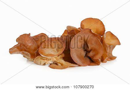 Jew's Ear Mushroom Isolated On White.