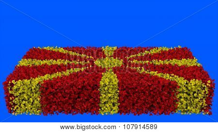 Flag of the Republic of Macedonia, Macedonian Flag made from leaves