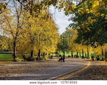 Public Park In Greenwich Village, London
