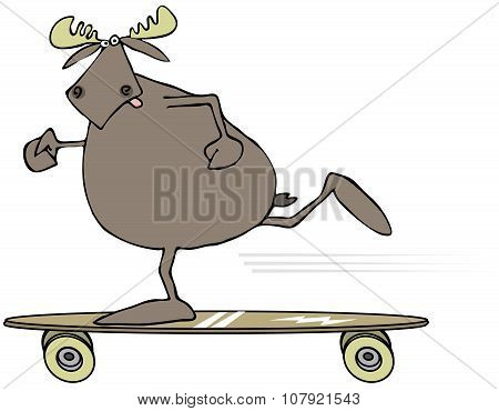 Moose on a skateboard