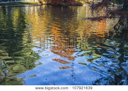 landscape, lake with reflections on water autumn