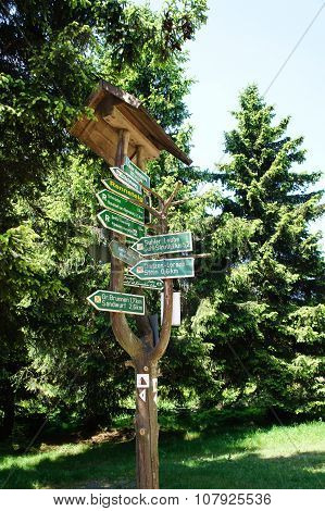 Signposts in the Thuringian Forest