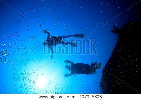 Scuba divers explore coral reef