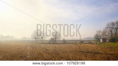 Lomellina Countryside, wintertime. Color image