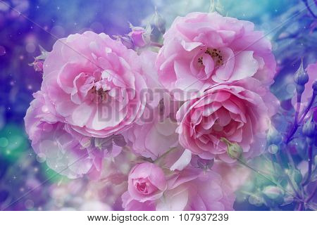 Beautiful Roses Artistic Dreamy Background With Bokeh Lights