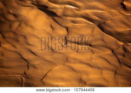 Wet Mud