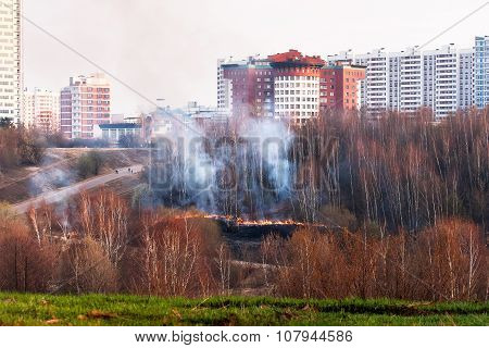 Wildfire In Park. Forest Fire In Autumn Day. Moscow, Russia.