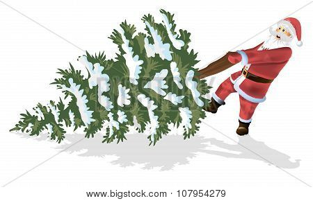 Santa Claus and Christmas tree isolated on white
