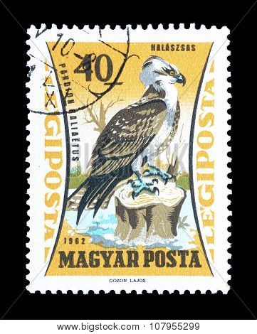 Hungary 1962