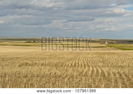 Wheat Field And Small Village In Canadian Prairies
