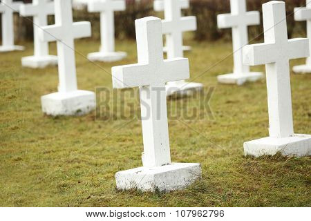 White Crosses At The Latvian War Cemetery