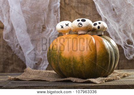 Three Champignons On Pumpkin Top