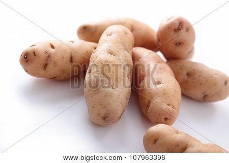 seasonal heritage potatoes