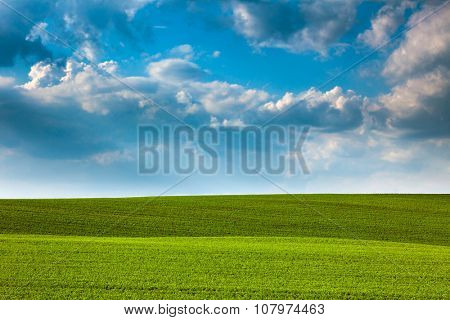 Abstract Green Fields and Blue Sky Background - beautiful nature landscape, idillyc waves of hills