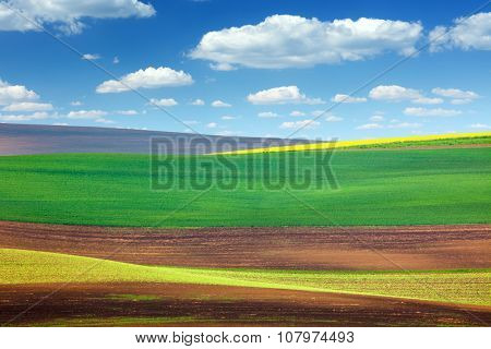 Background of Amazing Abstract Colorful Fields - beautiful nature landscape, spring wallpaper