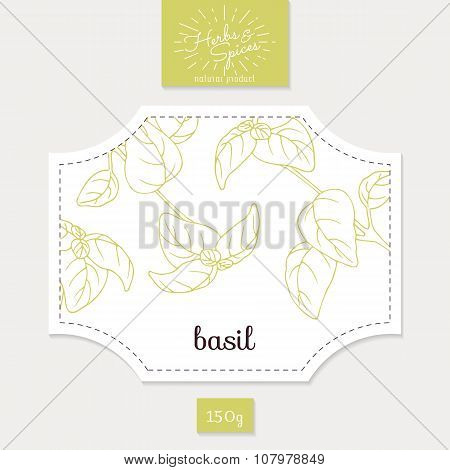 Product sticker with hand drawn basil leaves. Spicy herbs packaging design