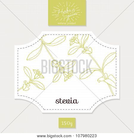Product sticker with hand drawn stevia leaves. Spicy herbs packaging design