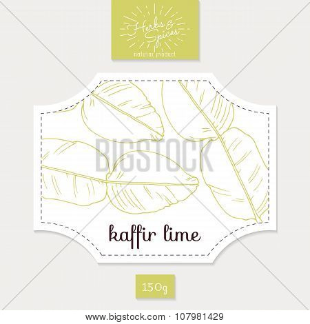 Product sticker with hand drawn kaffir lime leaves. Spicy herbs packaging design