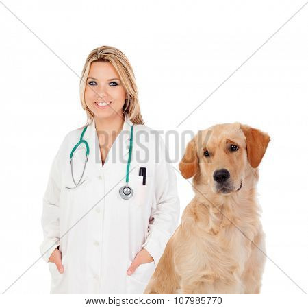 Blonde veterinary with a nice Labrador Retriever isolated on a white background
