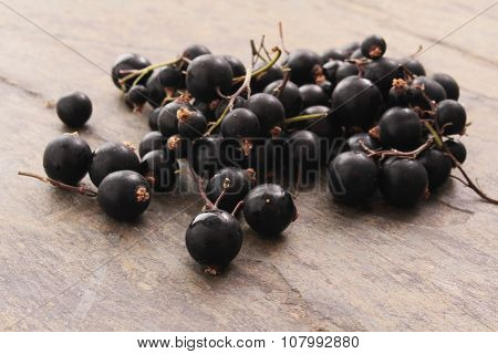 healthy blackcurrant berry fruit
