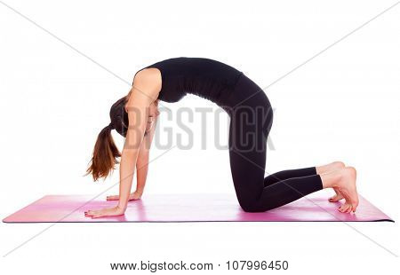 Beautiful woman doing Cat pose on yoga class. Studio shot.