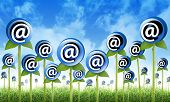 stock photo of spam  - Email Flowers are sprouting for a internet - JPG