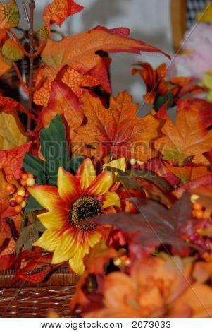 Fair Flowers 04