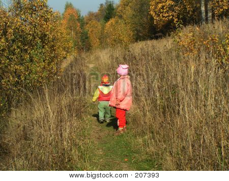Children Going Into A Forest