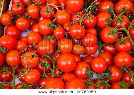 Cherry Vine Tomatoes