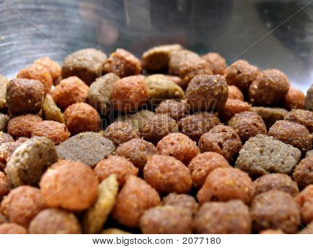 Dog Food In Metal Bowl