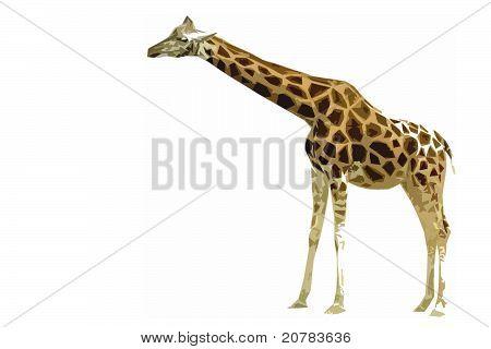 Giraffe Cutout