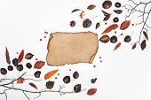 Dried Leaves And Blank Parchment poster