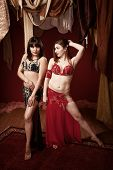 image of harem  - Gorgeous Latina and Caucasian Belly Dancers with beautiful legs - JPG