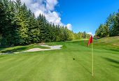 Golf course with gorgeous green, sand bunker and golf flag and real estate on background. poster