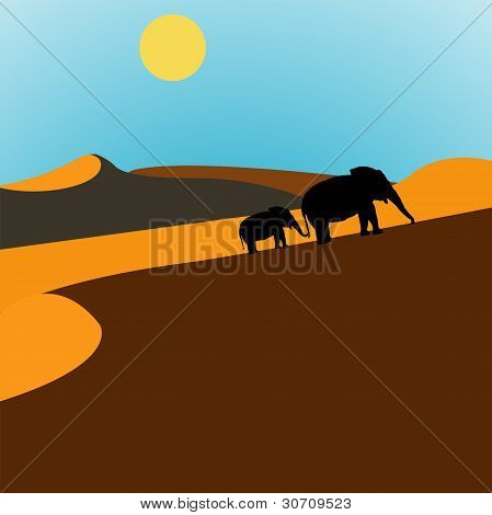 Elephants Desert Sunrise