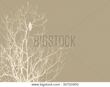 crow on branch on brown background, vector illustration