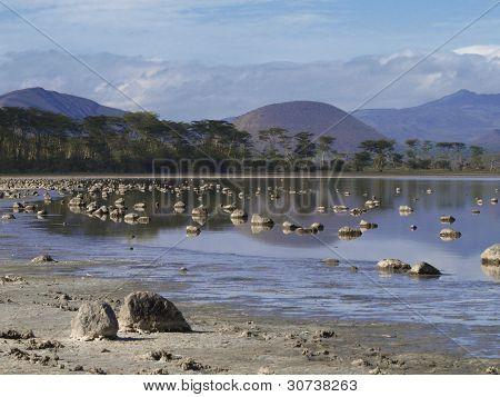 Elementata Lake