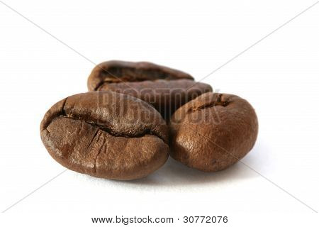 Three whole coffee beans detail on white background
