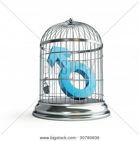 Cage For Birds Man
