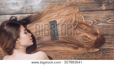 poster of Woman With Beautiful Long Hair On Wooden Background. Long Hair. Beautiful Hair Coloring Woman. Fashi